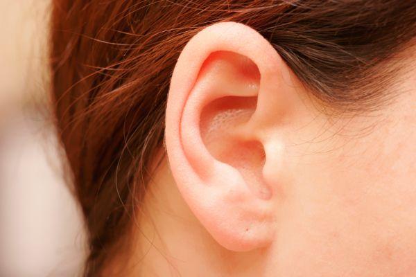 3-D Ears