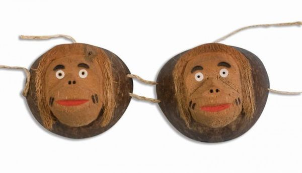 The coconut bra