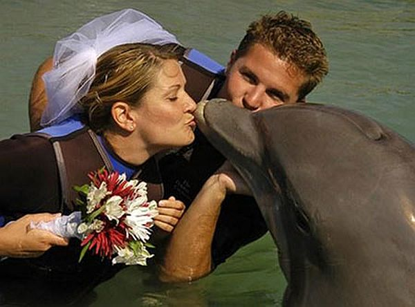 Sharon Tendler married a dolphin named Cindy