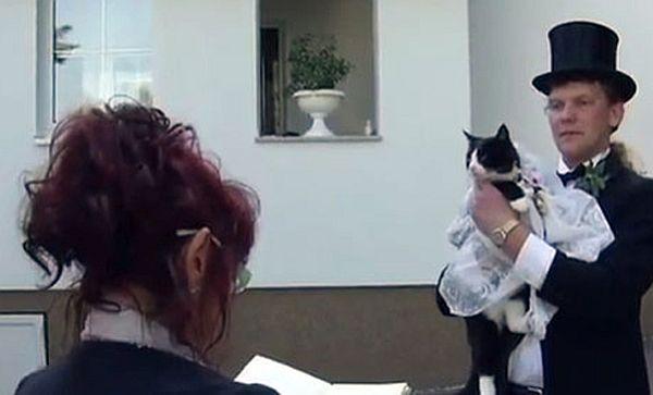 Uwe Mitzscherlich  marry cat
