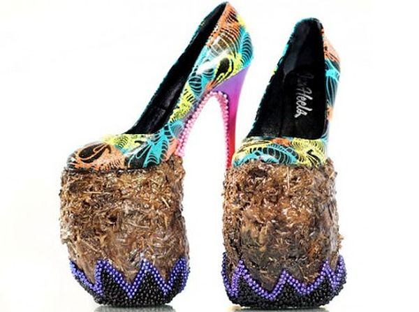 Elephant dung shoes 1